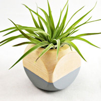 Cube Planter in Gray