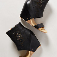 Perone Wedges