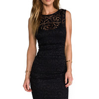 Velvet by Graham & Spencer Izzy Stretch Lace Dress in Black