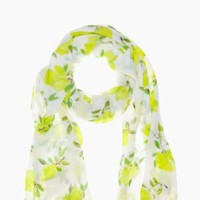 illustrated lemon scarf - kate spade new york