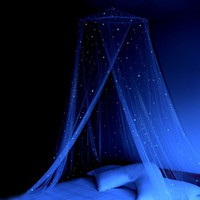 Glow in the Dark Canopy Bed Netting for Adults or Girls