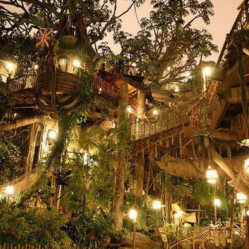 An Ultimate Tree House--Tarzan's Tree House