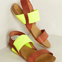 Pantego Sandals by Anthropologie