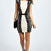 Annabelle Lace Panel Bodycon Dress
