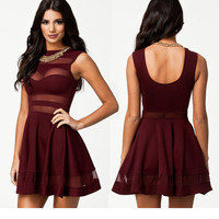 Transparent Mesh Skater Dress Party Dress Club Dress Event Dress Sundress (w053)