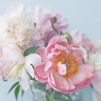 Peony Floral Art Print, Coral  Flower Photograph,  Pink  Wall Decor, Peony Bouquet Still Life