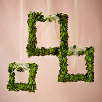 Boxwood Wreath Frames (3)