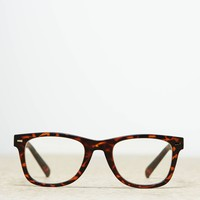 AEO Women's Icon Readers (Brown)
