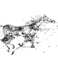 Horse created from flock of birds11 x by ContemporaryEarthArt