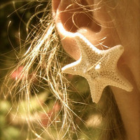 Natural Knobby Starfish EarringsBeach by sandnsurfcreations
