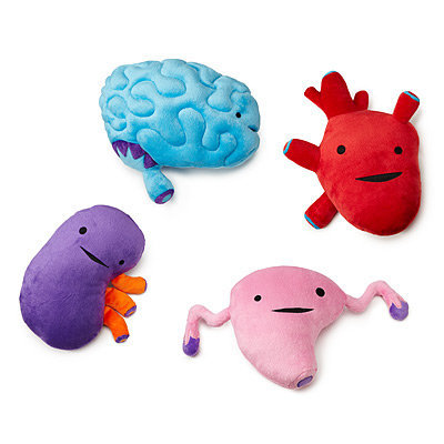 PLUSH ORGANS | I heart guts, stuffed heart, brain | UncommonGoods