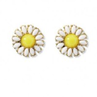 Yellow and white beaded daisy studs