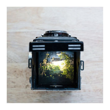 $20.00 8x8 Photograph Through the viewfinder of a Rolleiflex TLR by heysp