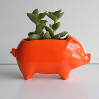 Ceramic 60s Mini Desk Pig Planter