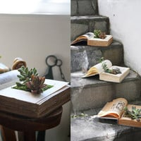 How To Make Your Own Book Planters for Succulents | Apartment Therapy Los Angeles