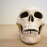 Realistic ceramic miner human skull by mudpuppy on Etsy