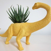 Beatrice the Apatosaurus Planter &amp; Succulent by PlaidPigeon