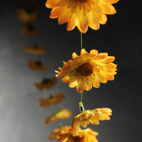Gerbera Yellow Daisies Garlands 18 flowers 6 feet
