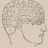 Vintage Clip Art Image – Vintage Phrenology Diagram – image from 1875 book – Printable Graphic  – instant download - CU OK img 2007