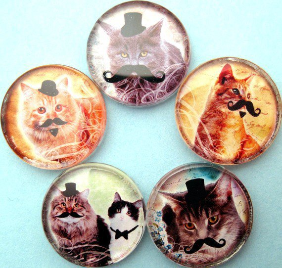 Cats with Mustaches Magnets Inch Circle Glass by StuckTogether
