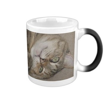 Cute Kitty Morph Mug