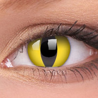 Yellow Cats Eye Contact Lenses, Yellow Cats Eyes Contacts | EyesBright.com