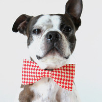 Little Blue Feathers | Red and white checkered Dog Bow-tie | Online Store Powered by Storenvy
