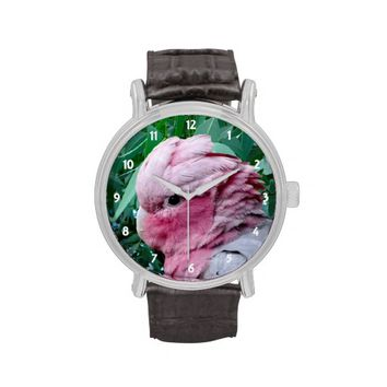Galah Cockatoo Vintage Leather Strap Watch