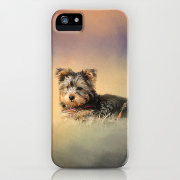 Loving the Leaves - Yorkshire Terrier Puppy iPhone & iPod Case by Jai Johnson