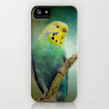 The Budgie Collection - Budgie 1 iPhone & iPod Case by Jai Johnson