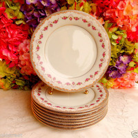 8 Beautiful Vintage Noritake Porcelain Dinner Plates ~ Rose Swags ~ Scrolls