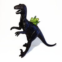 Huge Black Recycled Velociraptor Dinosaur Planter - With Succulent Plant