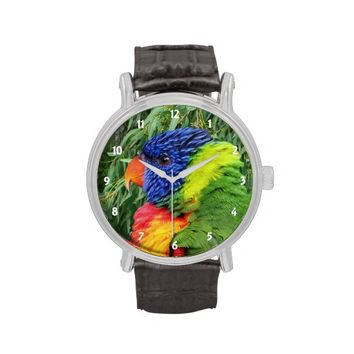 Rainbow Lorikeet Vintage Leather Strap Watch