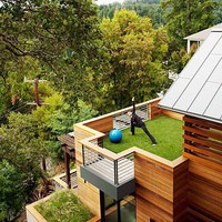 Green balcony  LEED-certified Treetop Home in Marin County - Sunset.com