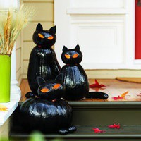 Make black cat o&amp;#39;lanterns - Sunset.com