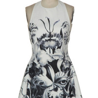 Force of Nature Fit & Flare Halter Dress - Black + White | Daily Chic