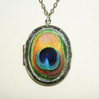 PEACOCK FEATHER Necklace Locket Altered Art Pendant | Luulla