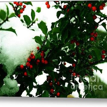 Holly And The First Snow Acrylic Print