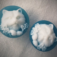 3/4 inch 19mm Plugs Blue Persian Cat for Stretched by Glamsquared