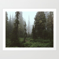 Rainier Forest Art Print by Kevin Russ