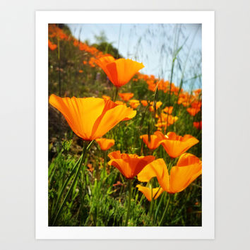 Roadside Beauty Art Print by DuckyB (Brandi)
