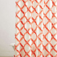 Ruffled Trellis Shower Curtain