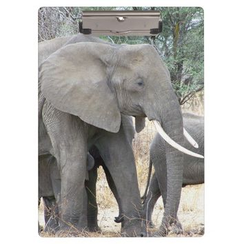 Elephants Clipboard