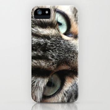 cats square o1 iPhone & iPod Case by Steffi ~ findsFUNDSTUECKE