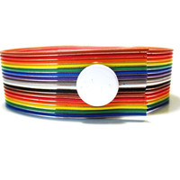 Rainbow Computer Ribbon Wire Bracelet Custom by clonehardware