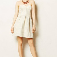 Marli Jacquard Dress