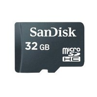 SanDisk 32GB microSDHC Memory Card (Bulk Package)