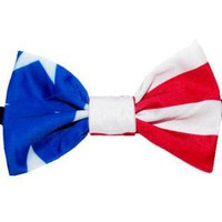 Multi Other - Stars and Stripes- Men's Bowtie | UsTrendy
