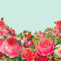 BOLDEST FLORAL Art Print by Allyson Johnson