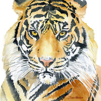 Tiger Watercolor Painting - 5 x 7 - Giclee Fine Art Print Reproduction